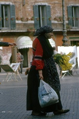 Oude vrouw die mimosa verkoop (Rome, Italië); Old lady selling mimosa (Rome, Italy)