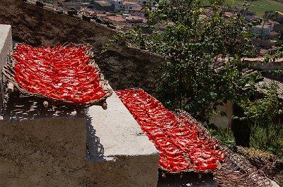 Tomaten drogen (Campanië, Italië); Sun-dried tomatoes (Campania, Italy)