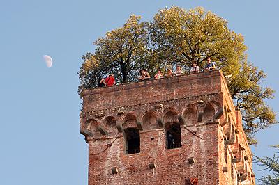 Torre Guinigi, Lucca, Toscane, Italië; Torre Guinigi, Lucca, Tuscany, Italy