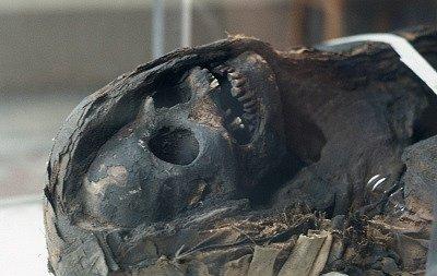 Archeologisch museum (Florence, Italië); Archaeological museum (Florence, Italy)
