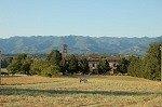Santa Maria a Olmi (Toscane, Italië); Santa Maria a Olmi (Tuscany, Italy)