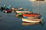 Haven van Giovinazzo (Apulië, Italië); Harbour of Giovinazzo (Apulia, Italy)