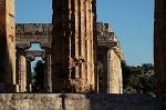 Tempels, Paestum (Campanië. Italië); Temples, Paestum (Campania, Italy)