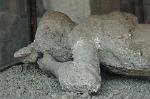Afgietsel van een jonge vrouw, Pompeii; Cast of a young lady, Pompeii