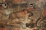Huis van de Jacht, Pompeii, Campanië, Italië; Casa dei Ceii, Pompeii, Campania, Italy