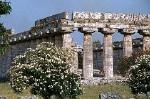 Tempel van Hera (